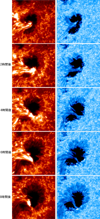 sunspot_evolution_rev 2.png